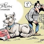 12 neue Gerichtsurteile rund um die Haltung von Haustieren